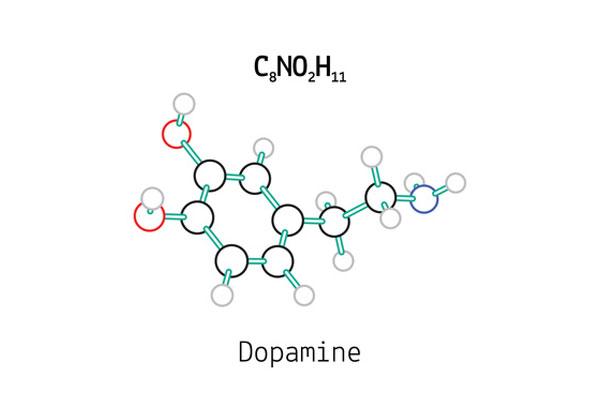 Zoom sur la Dopamine hormone de la vitalité - Conseils Parinat