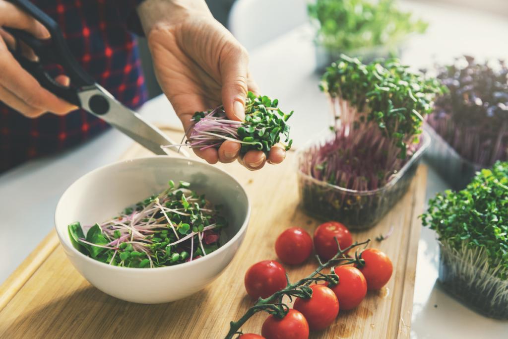 Découvrez nos conseils pour adopter un régime végétarien équilibré